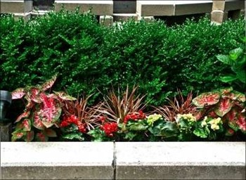 Maintenance Can Boost Value - Keeping Your Curb Appeal - The