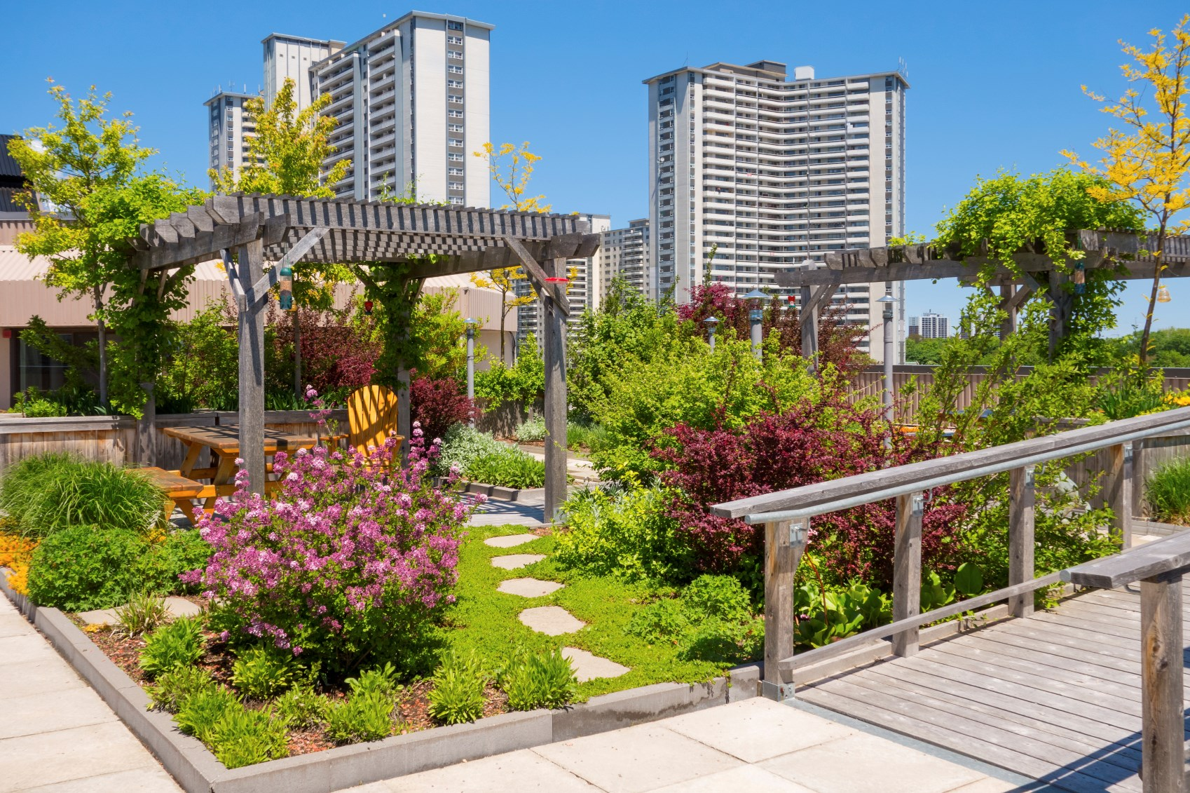 Green Roofs: A Primer How Get Started On Your Rooftop Garden