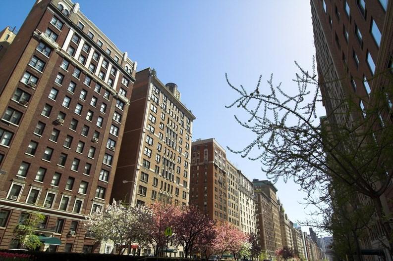 Douglas elliman released new third quarter surveys for for Douglas elliman real estate manhattan